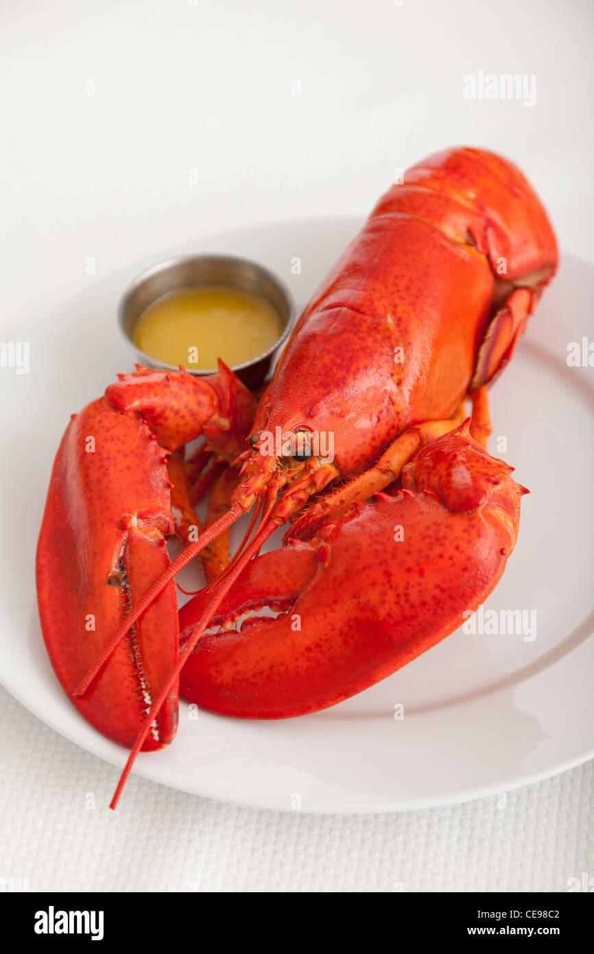 USA, Illinois, Metamora, Lobster on plate - Stock Image