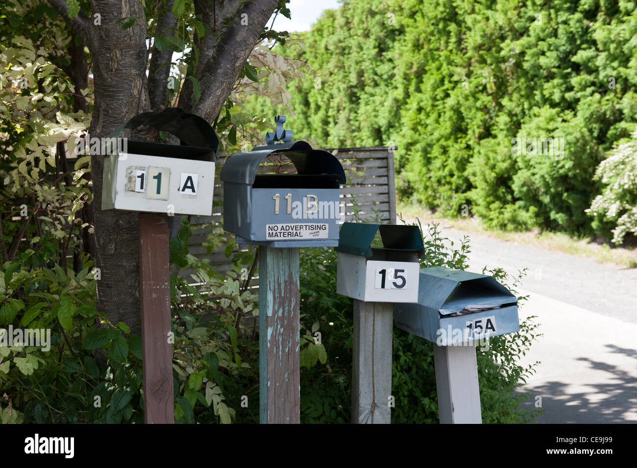 Four mailboxes at the start of a shared driveway in Tauranga, New Zealand. Numbers jump from 11 to 15, with no number - Stock Image