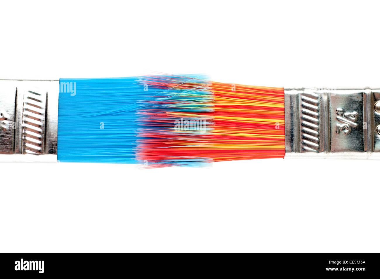 Two interlocked paint brushes - Stock Image