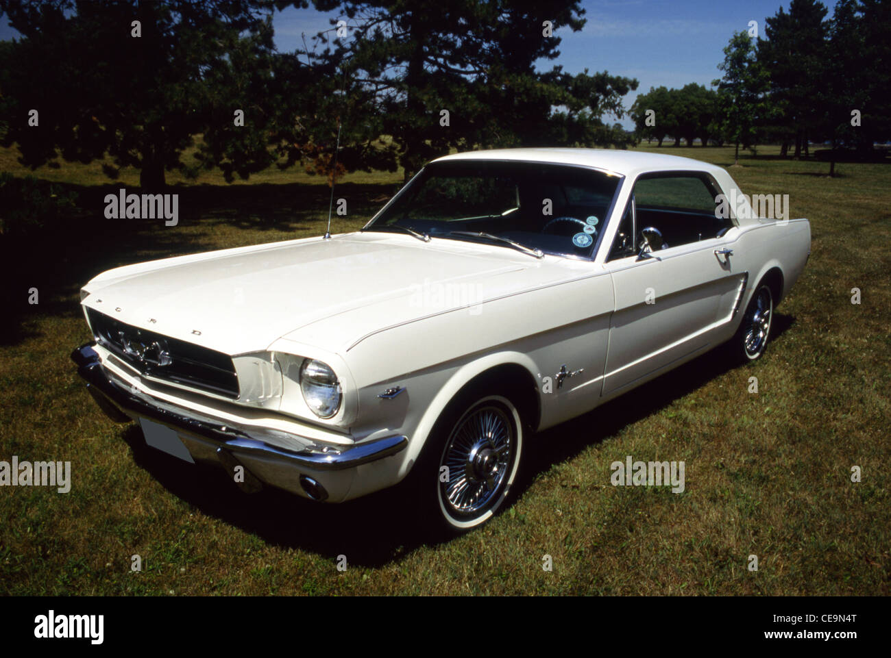 ford mustang 1964 stock photos amp ford mustang 1964 stock