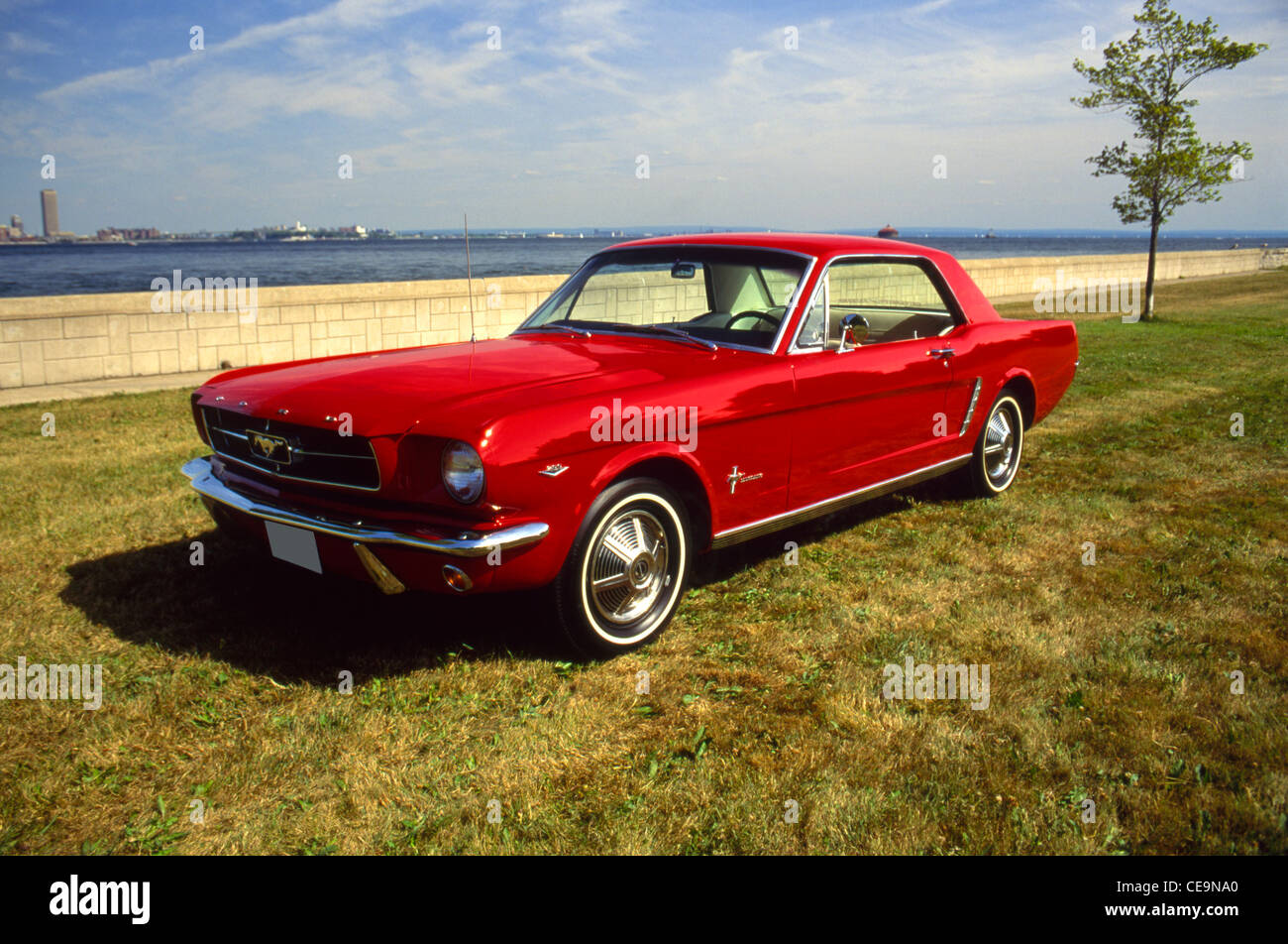 1965 ford mustang stock image