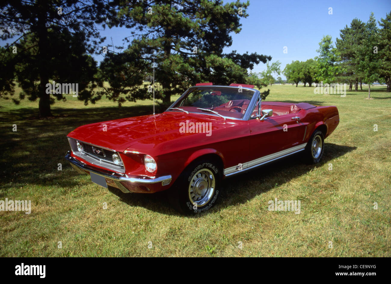 1968 ford mustang gt stock image