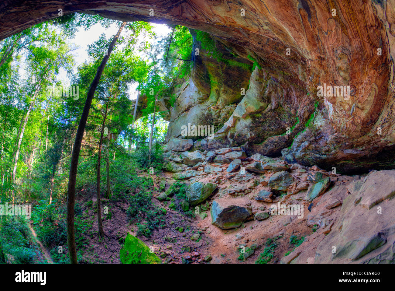 Gray's Arch at Red River Gorge in Kentucky - Stock Image