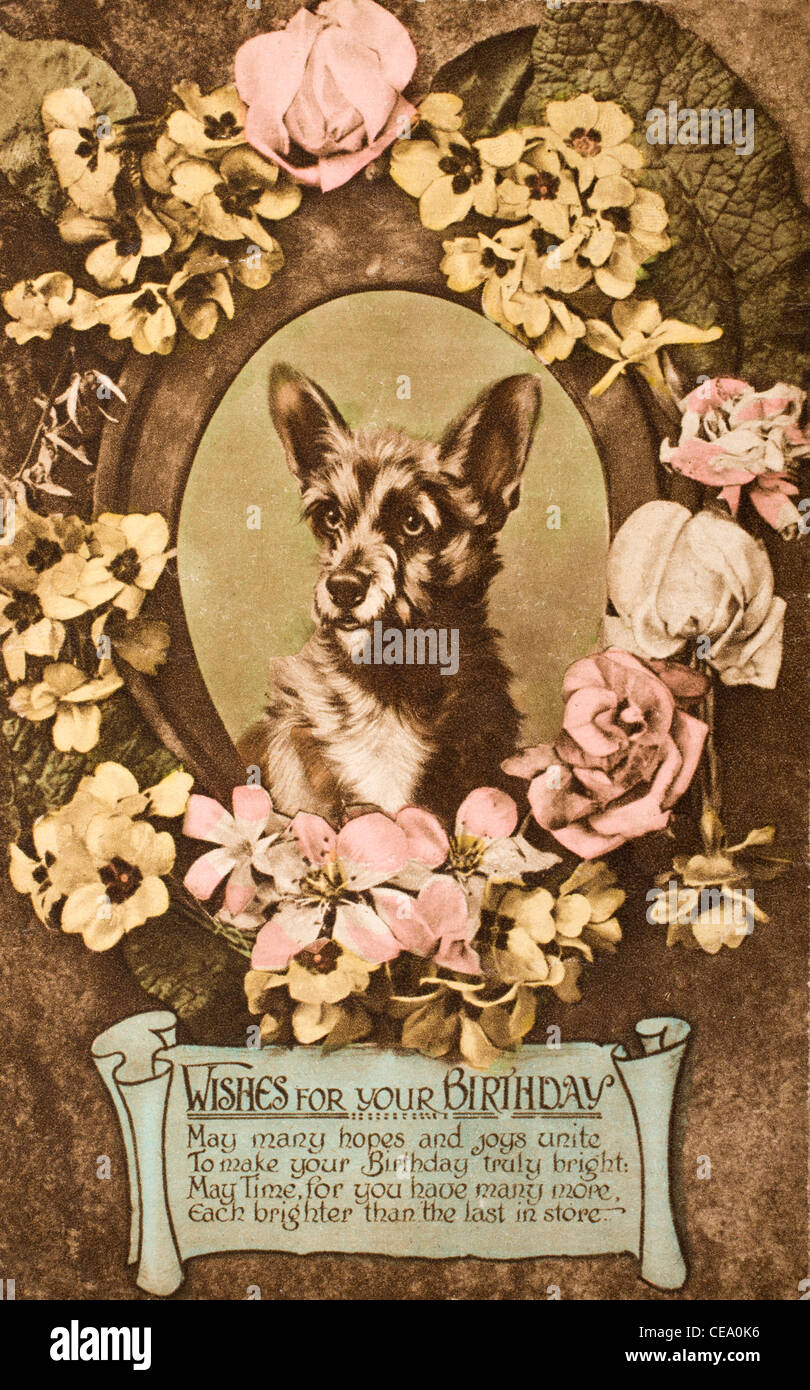 1920s Birthday Card In The Form Of A Postcard Hand Painted Image Dog And Flowers