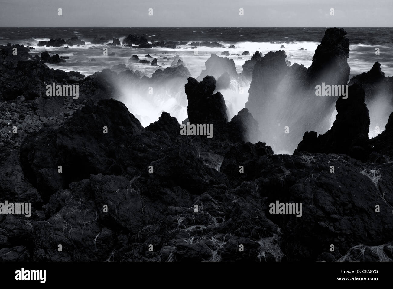 Crashing waves at Laupahoehoe Point. Hawaii, The Big Island. - Stock Image