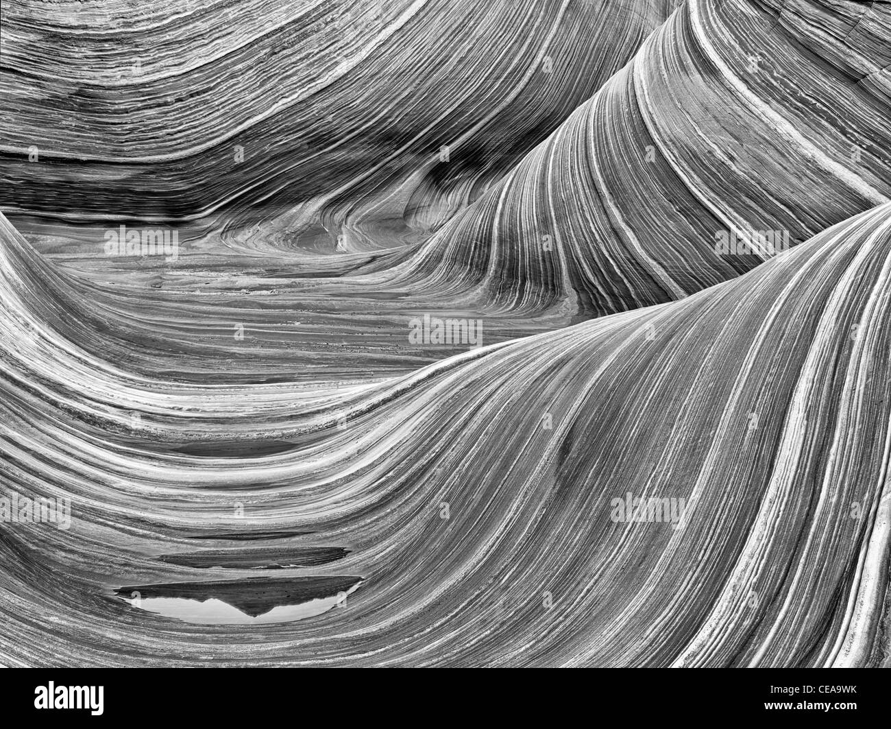 Sandtone formation and pool of water in North Coyote Buttes, The Wave. Paria Canyon Vermillion Cliffs Wilderness. Stock Photo