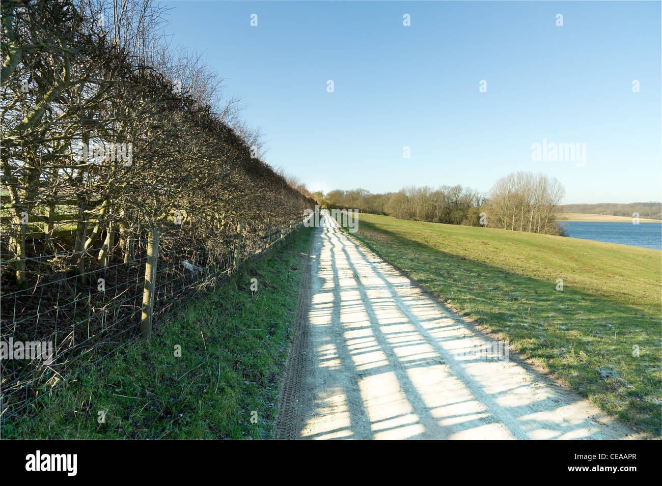Path in an english country park - Stock Image