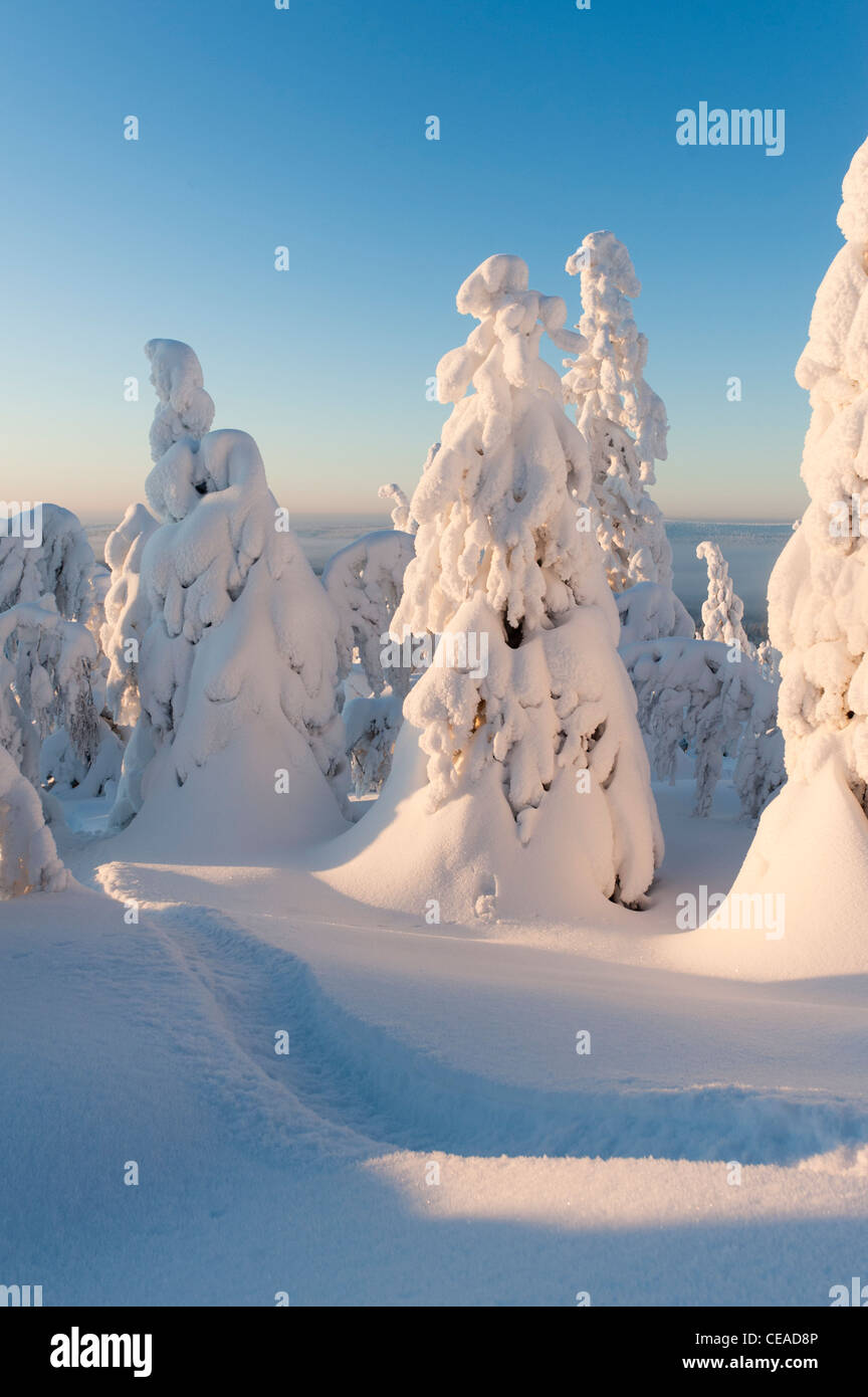 Snow-clad views of Iso-Syöte, Finland - Stock Image