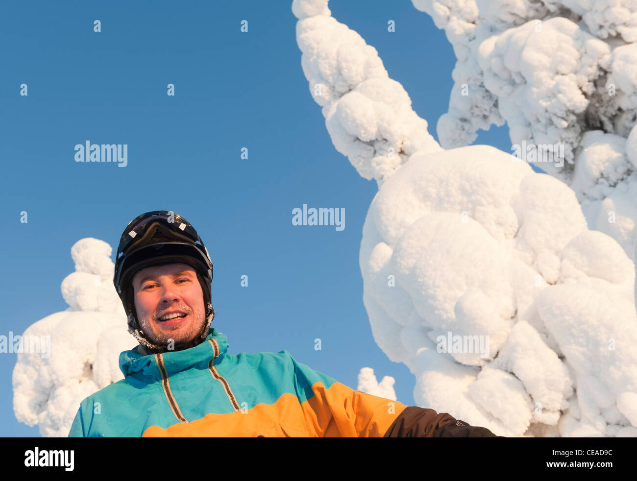 Portrait of a male skier among snow-clad trees in Isosyöte, Finland. - Stock Image