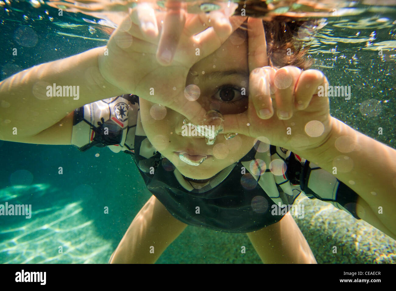 Playing in a back yard swimming pool in Cairns, far north Queensland, Australia - Stock Image
