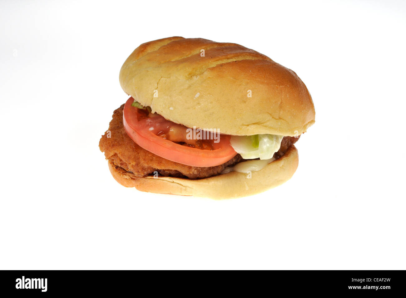 Burger King tendercrisp chicken sandwich with lettuce and tomato on artisan roll on white background cutout USA. - Stock Image