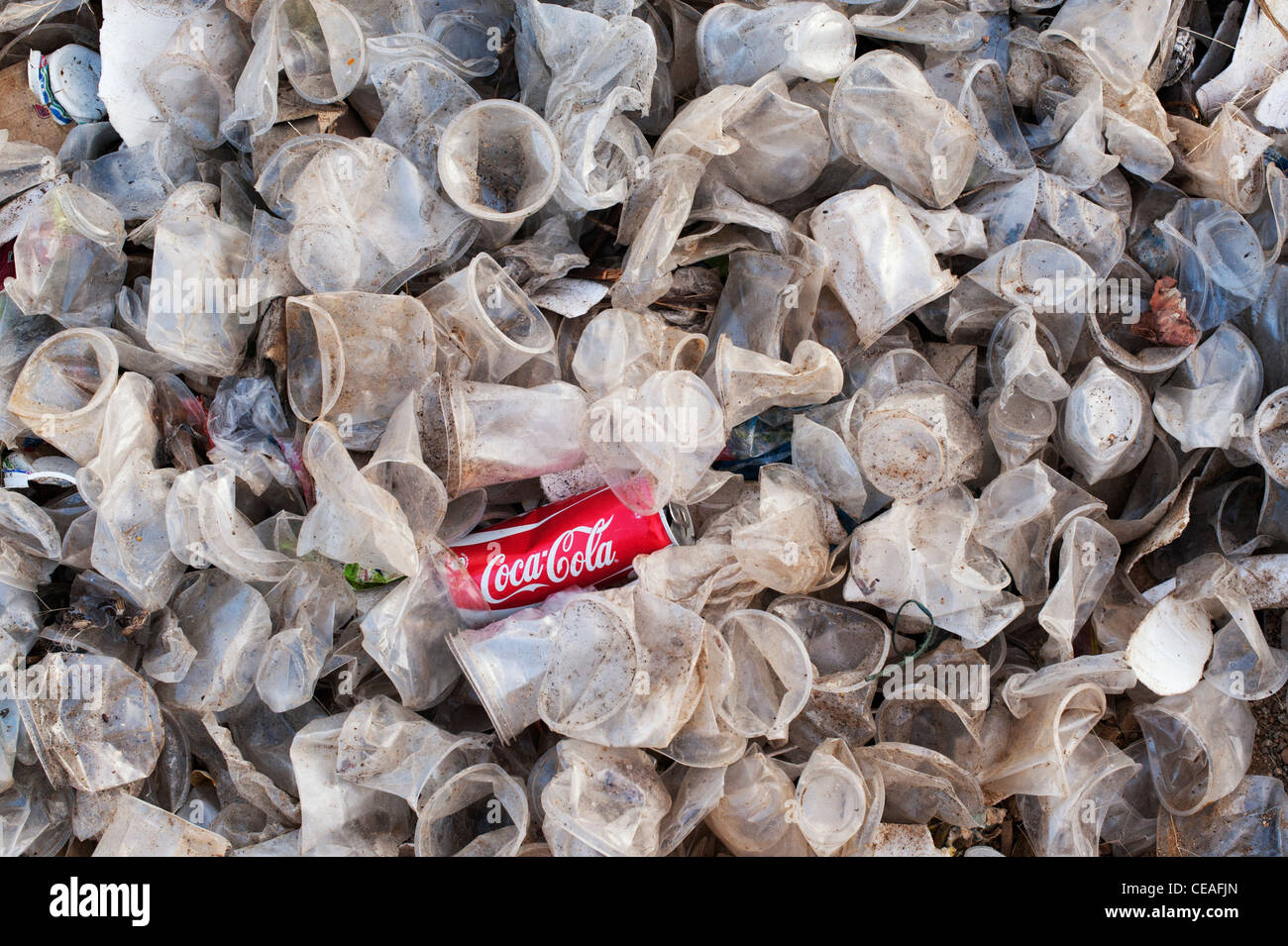 Discarded coca cola drinks can and plastic tea cups in the Indian countryside - Stock Image