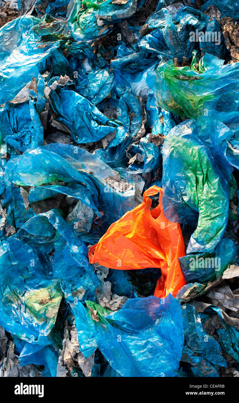 Household plastic bags thrown away in the indian countryside. Andhra Pradesh, India - Stock Image