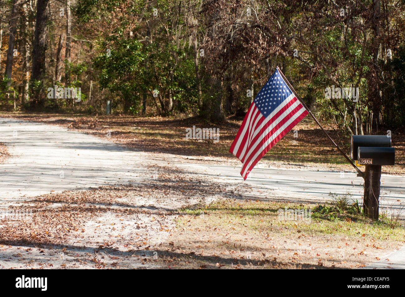 American flag attached to the letter box near the Forrest drive, United States, USA - Stock Image