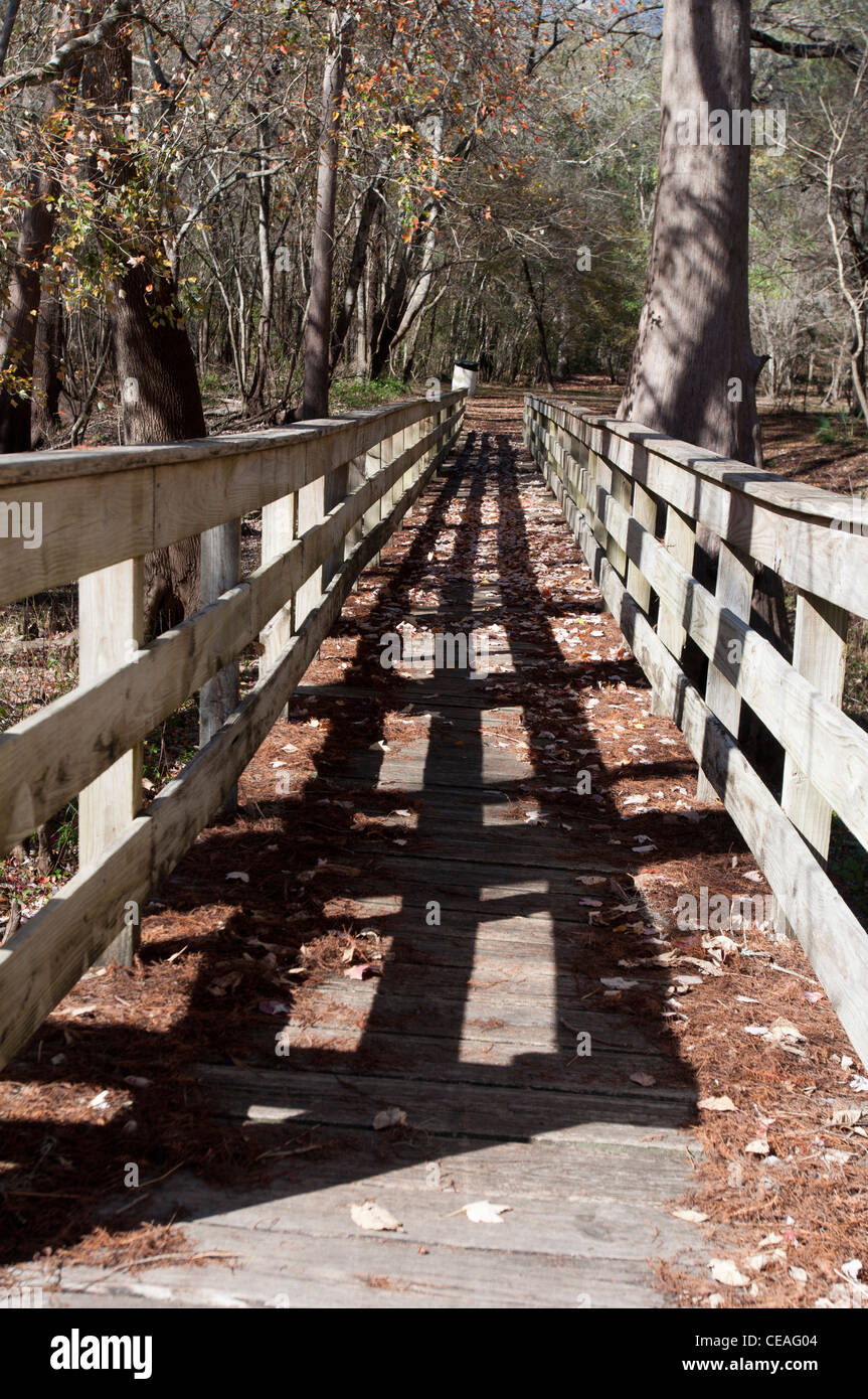 Wooden platform allowing visitors to reach a river mainstream during flood, Ichetucknee river, Florida, United States, Stock Photo