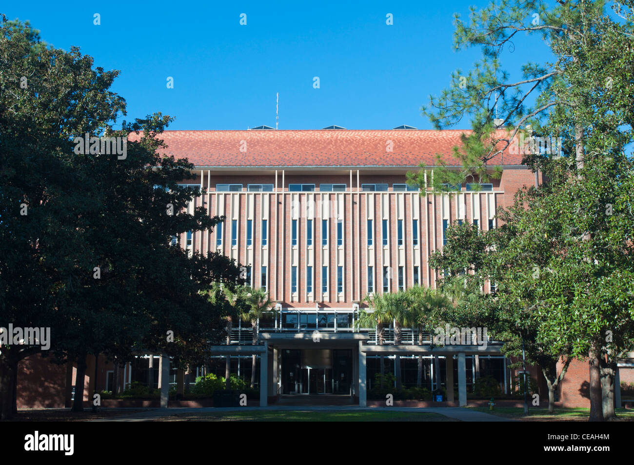 Library West building,  University of Florida, Gainesville, Florida, USA, United States, North America - Stock Image