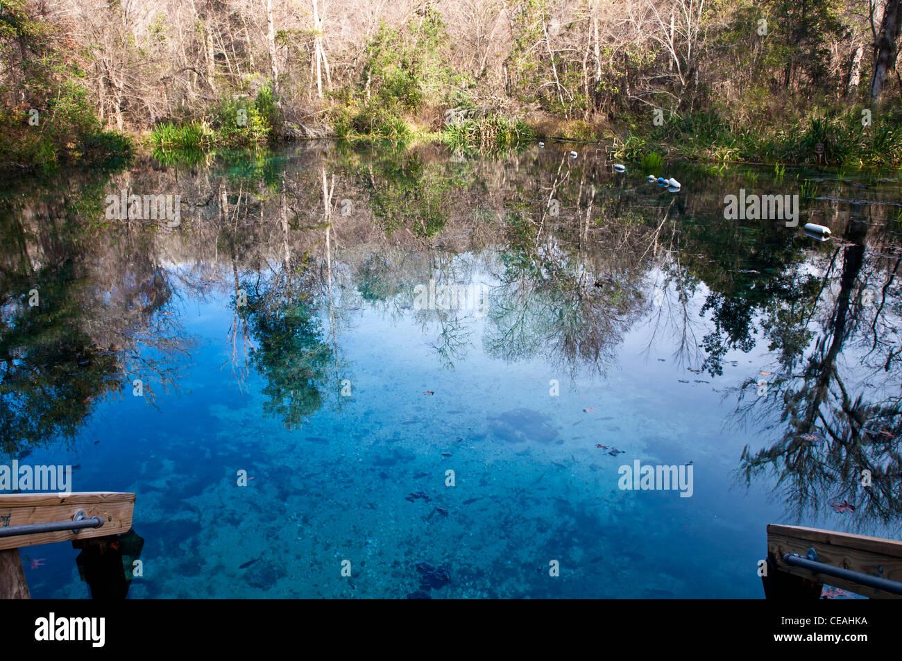 Blue Hole, Ichetucknee Springs State Park, Florida, North America, USA - Stock Image