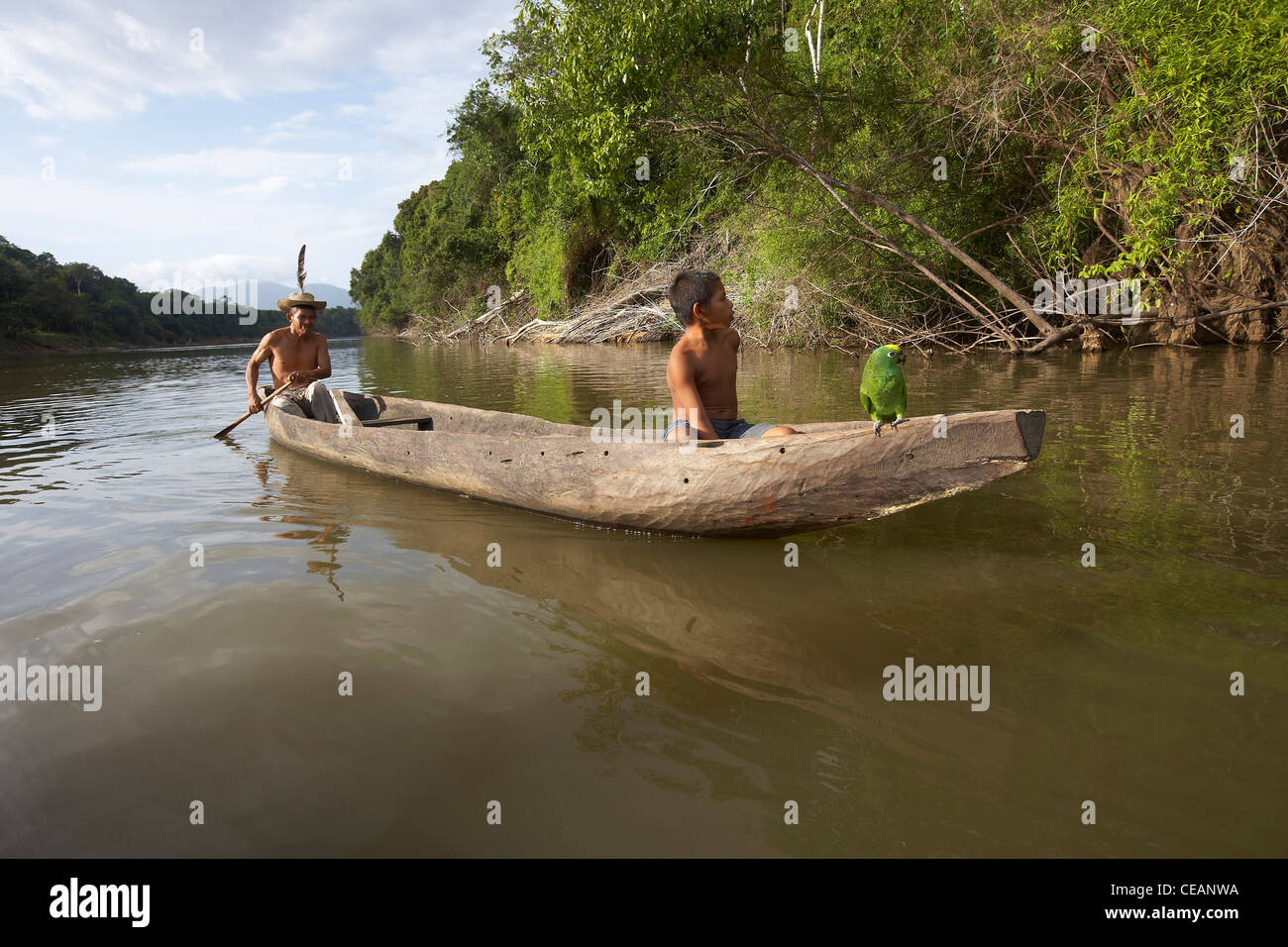 Amerindian villager and young boy with parrot paddle a dugout canoe along the Rewa River, Rewa, Guyana, South America. - Stock Image