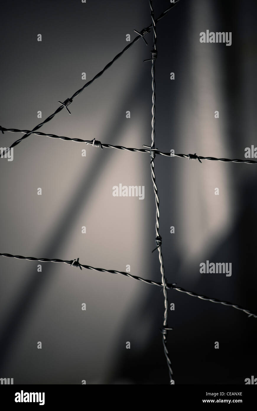 Barbed Wires and shadows - Stock Image