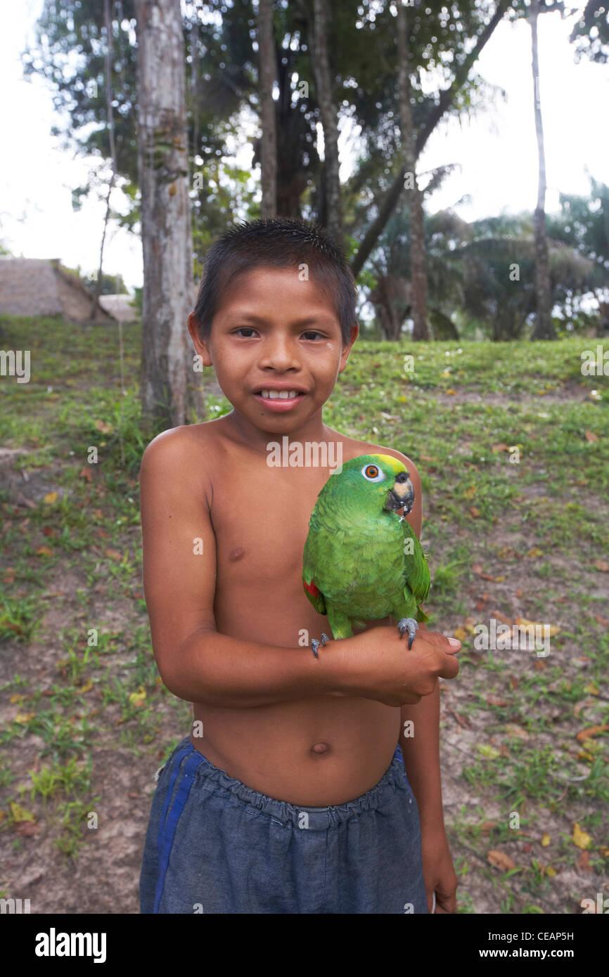 Amerindian boy with his pet parrot paddle, Rewa village, Rupununi, Guyana, South America. - Stock Image