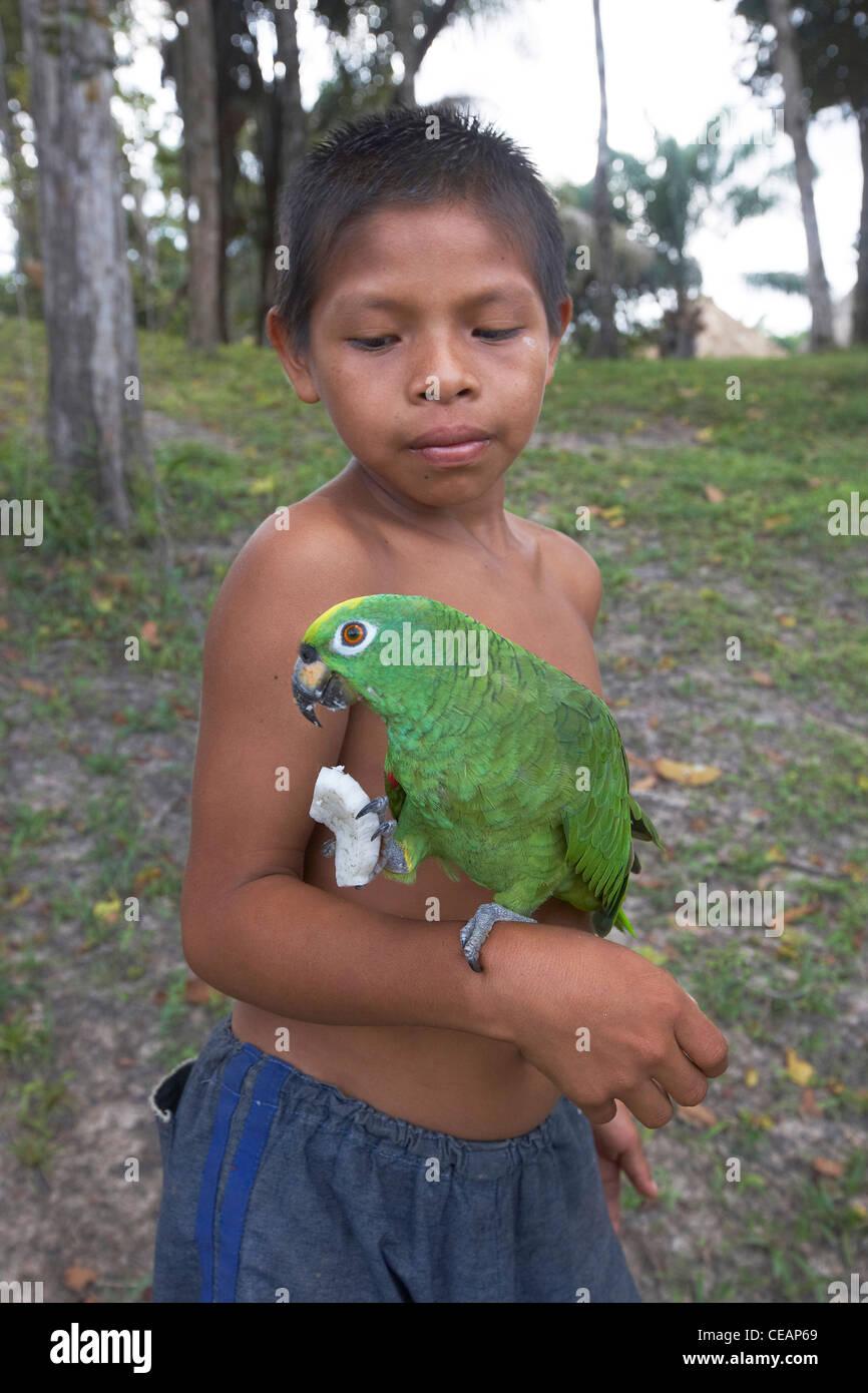 Amerindian boy with his pet parrot paddle, Rewa, Guyana, South America. - Stock Image