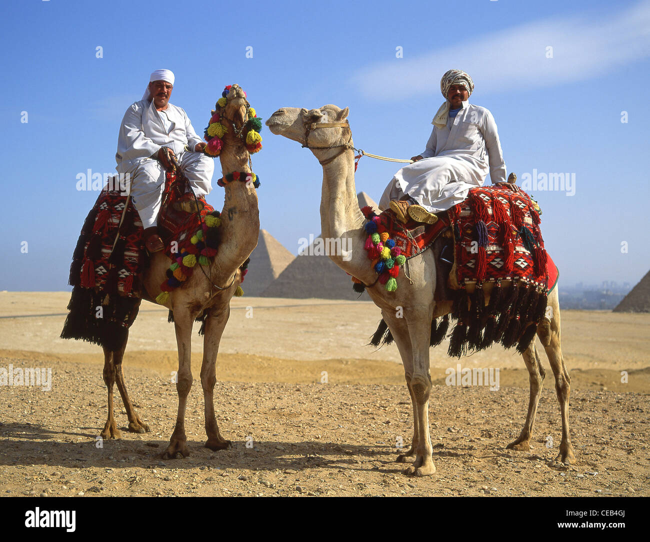 Camel drivers with camels, The Great Pyramids of Giza, Giza, Giza Governate, Republic of Egypt - Stock Image