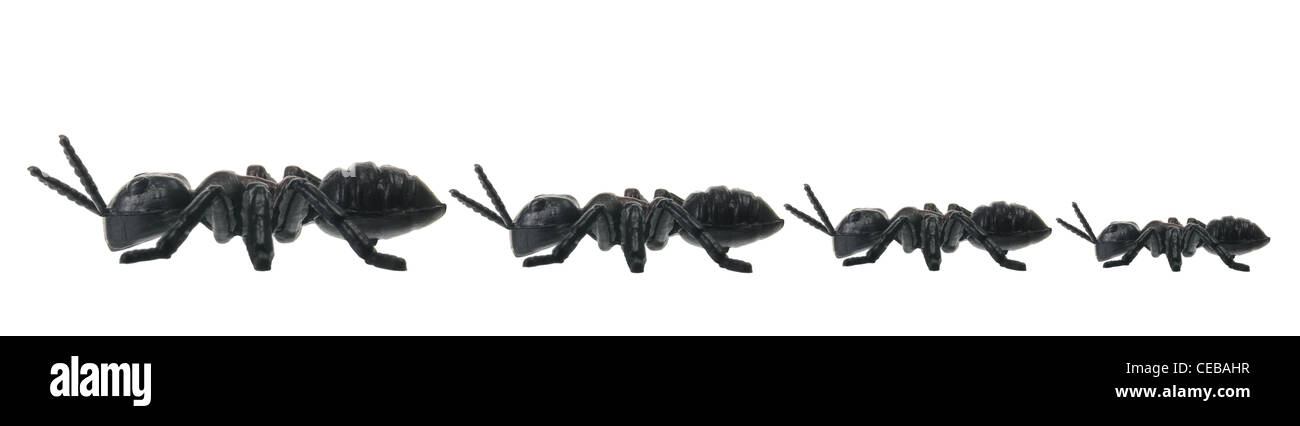 Line of Toy Ants - Stock Image