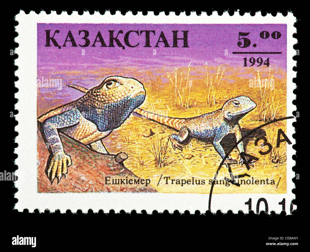 Postage stamp from Kazakhstan depicting a small lizard (Trapelus sanguinolenta) - Stock Image