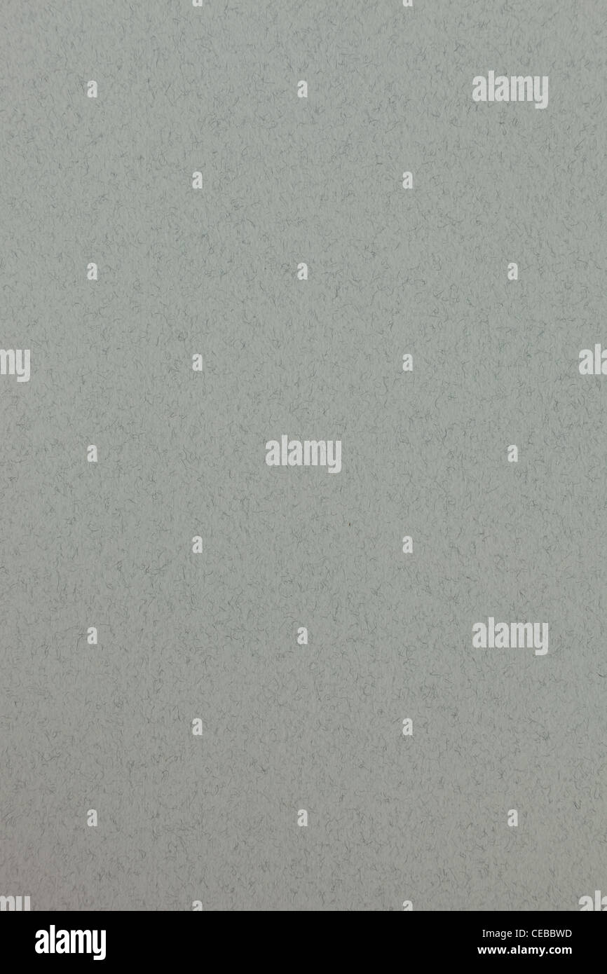Fine gray pastel paper texture for background - Stock Image