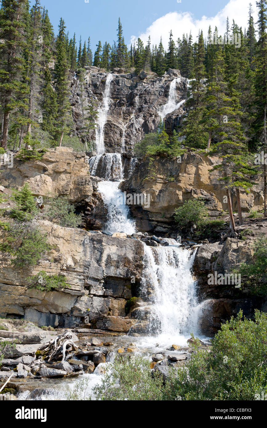 Scenic Tangle Falls, an attraction on the Icefields Parkway, Alberta, Canada. - Stock Image