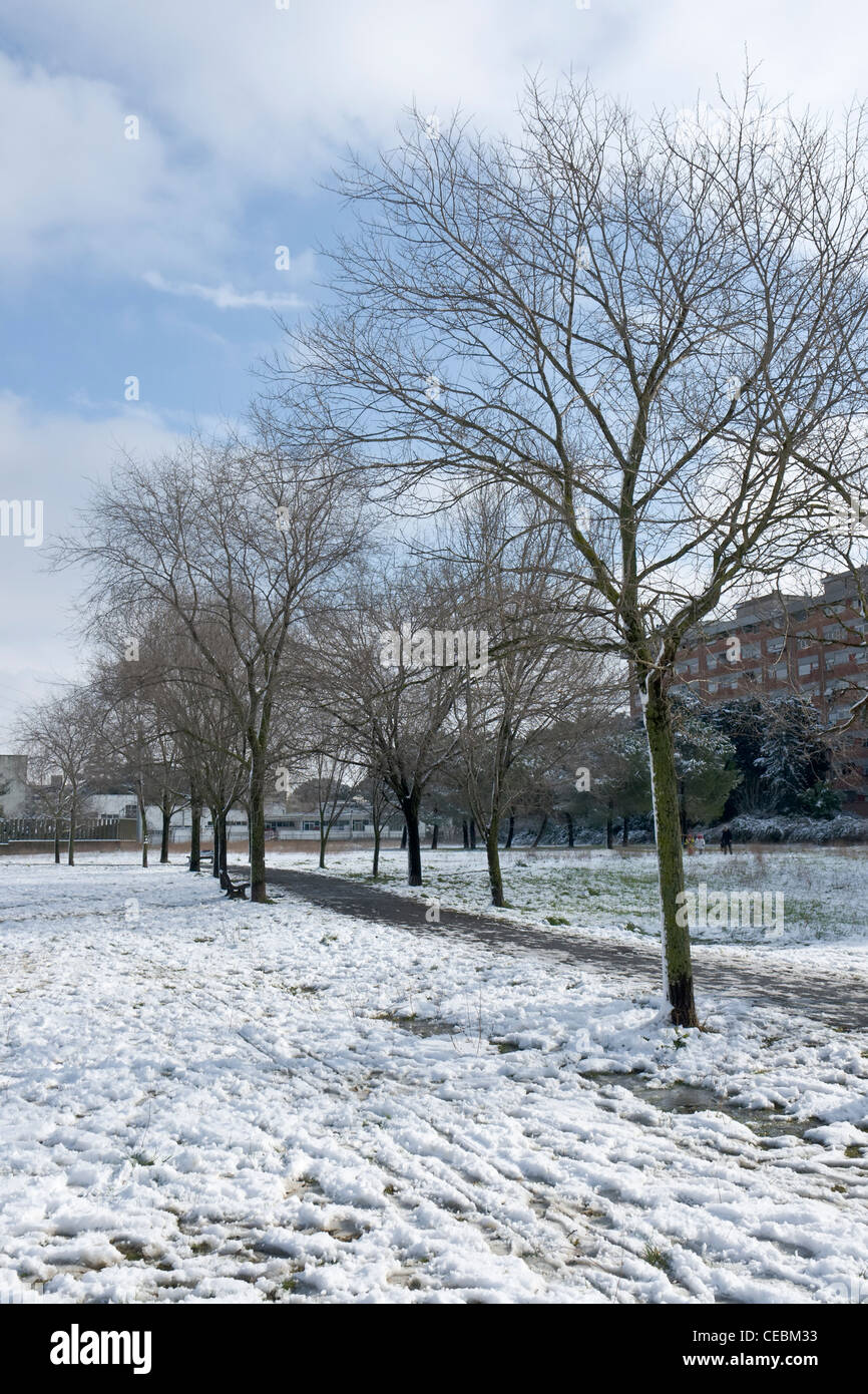Public Park in the Spinaceto district after the rare snowfall occurred on February 4th, 2012 in Rome - Stock Image