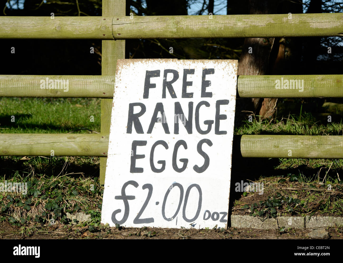 ' Free range eggs '  for sale sign - Stock Image
