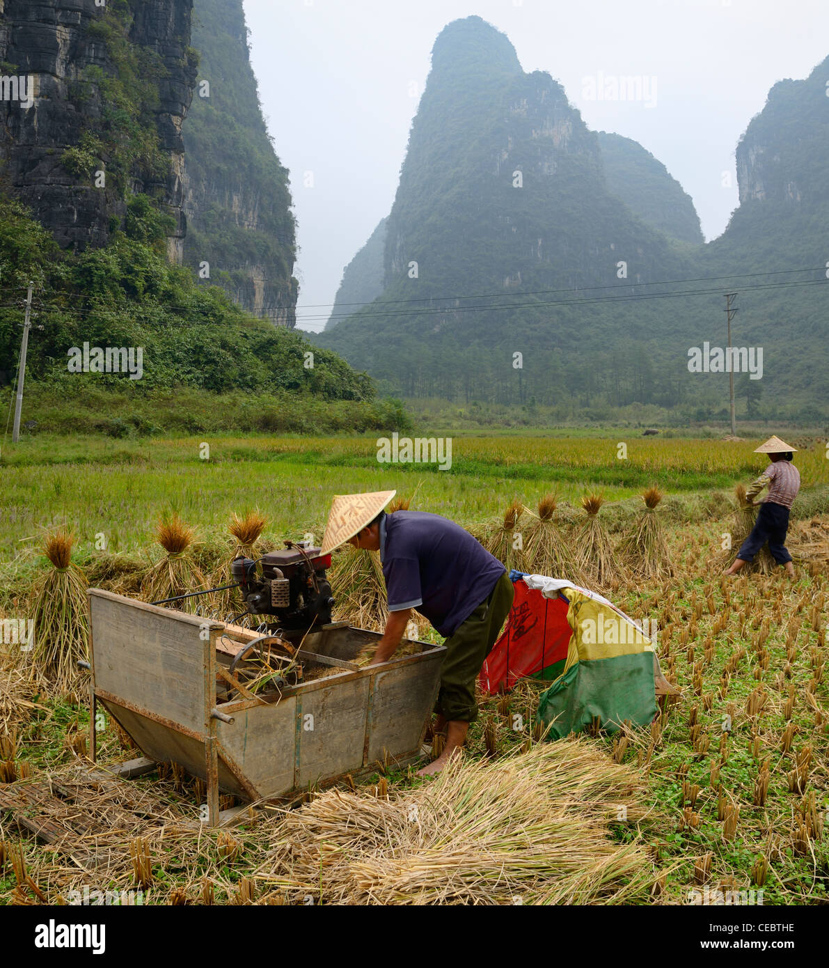 Farmers bundling straw and harvesting rice with Karst limestone peaks near Yangshuo Peoples Republic of China - Stock Image