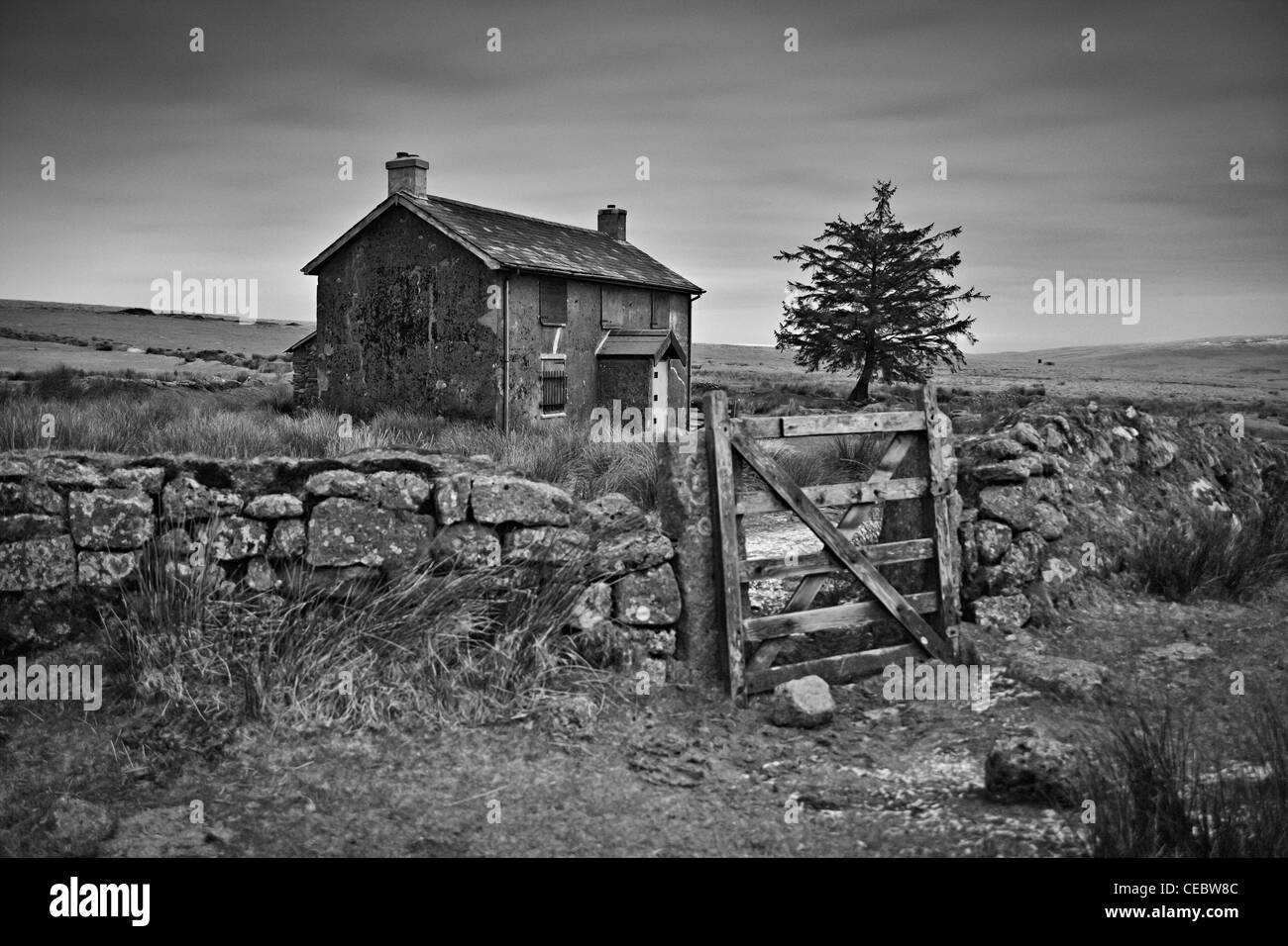 A night picture taken of Nun's Cross Farm on Dartmoor. 30 second exposure turns night into day.  Converted to - Stock Image