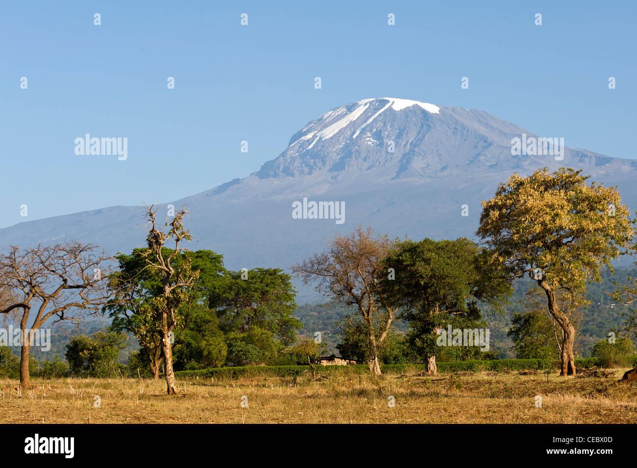 Kilimanjaro and agricultural land during dry season as seen from Moshi Tanzania - Stock Image