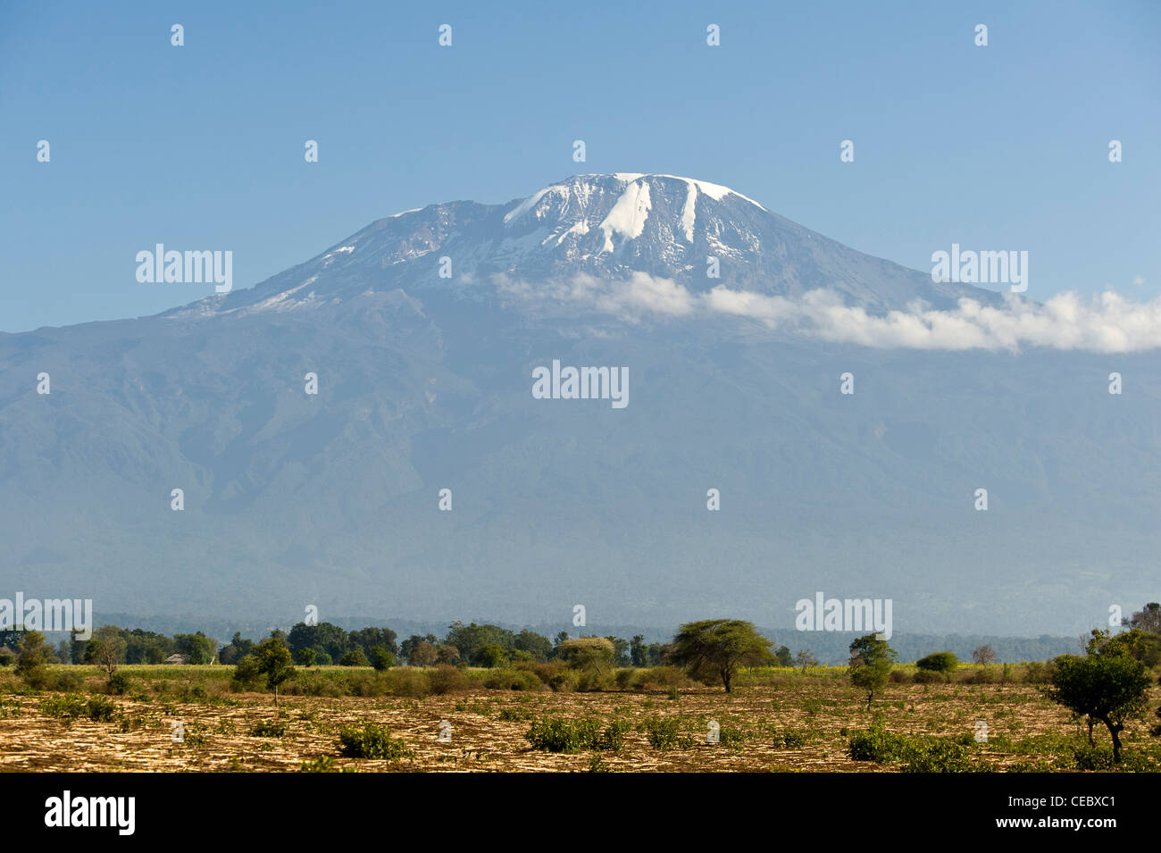 Kilimanjaro and agriculture fields during dry season in Moshi Tanzania - Stock Image