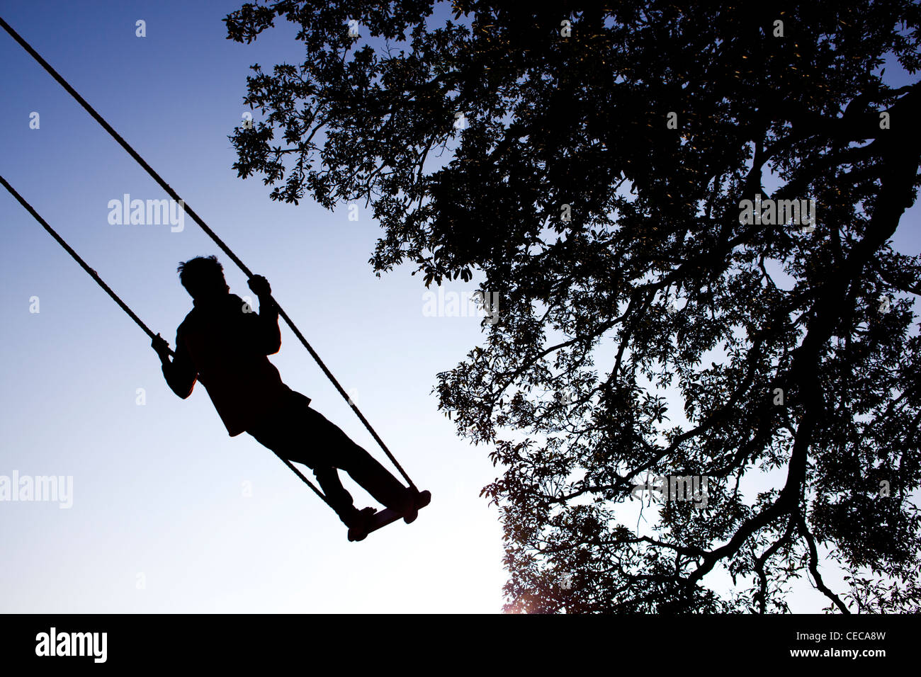 Child on a swing tradition Pokhara Nepal Asia - Stock Image