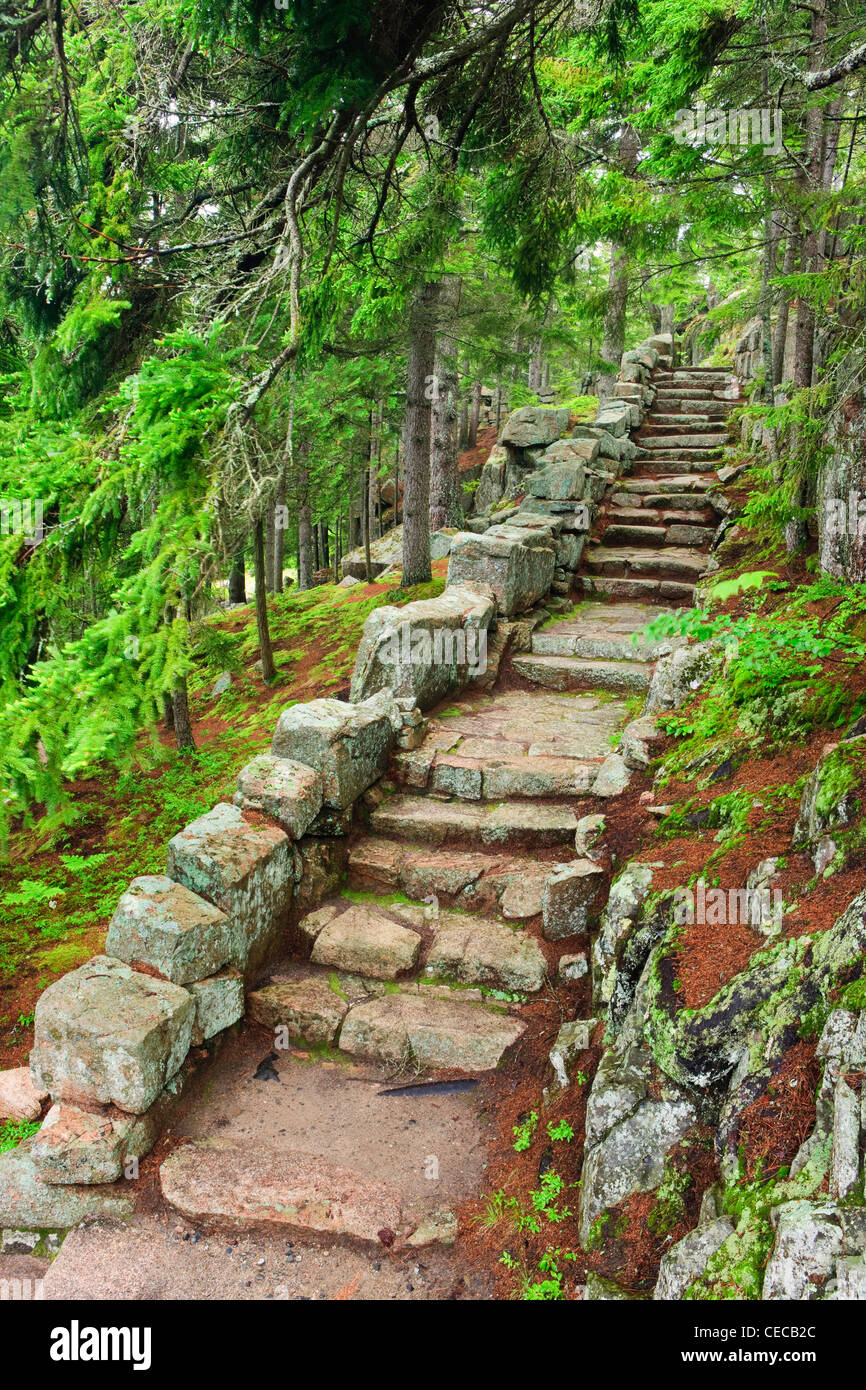A stone staircase at the Thuya Gardens in Northeast Harbor, Maine. Stock Photo