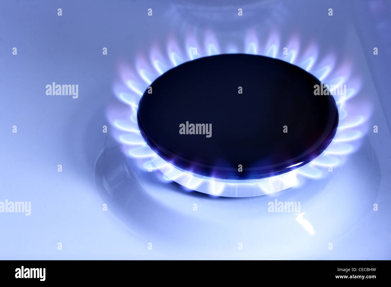 Blue gas flame on hob close up - Stock Image