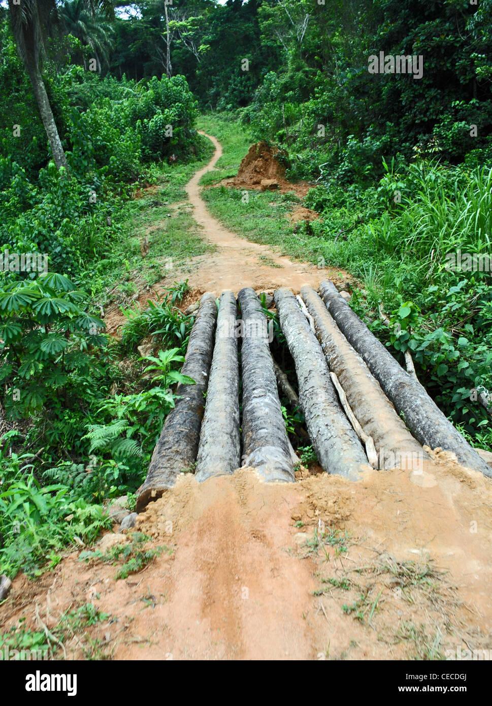 Dirt track to the Sierra Leone border, near Foya City, Liberia - Stock Image