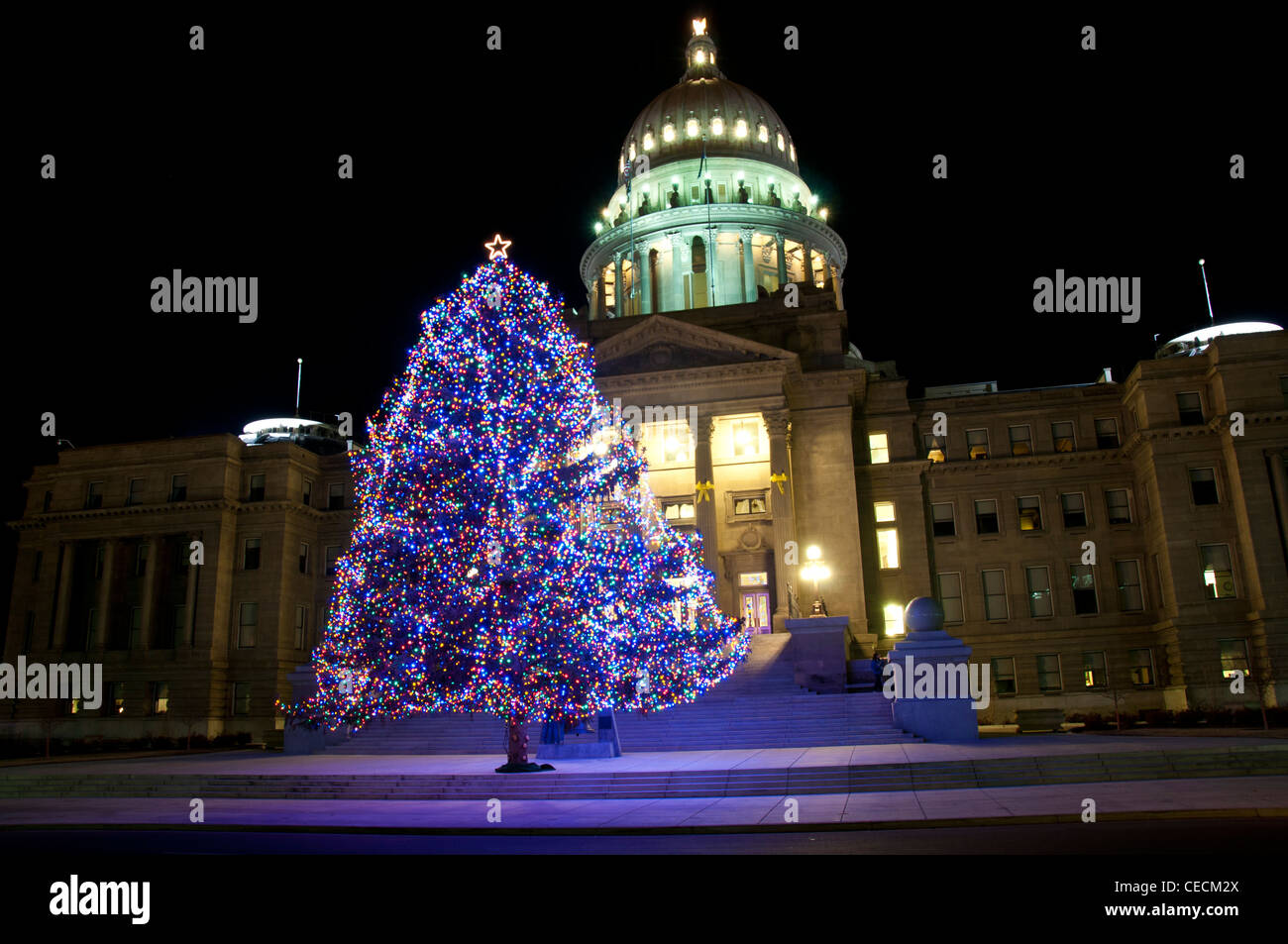 Idaho State Capitol Building and Christmas tree - 2011 - Stock Image