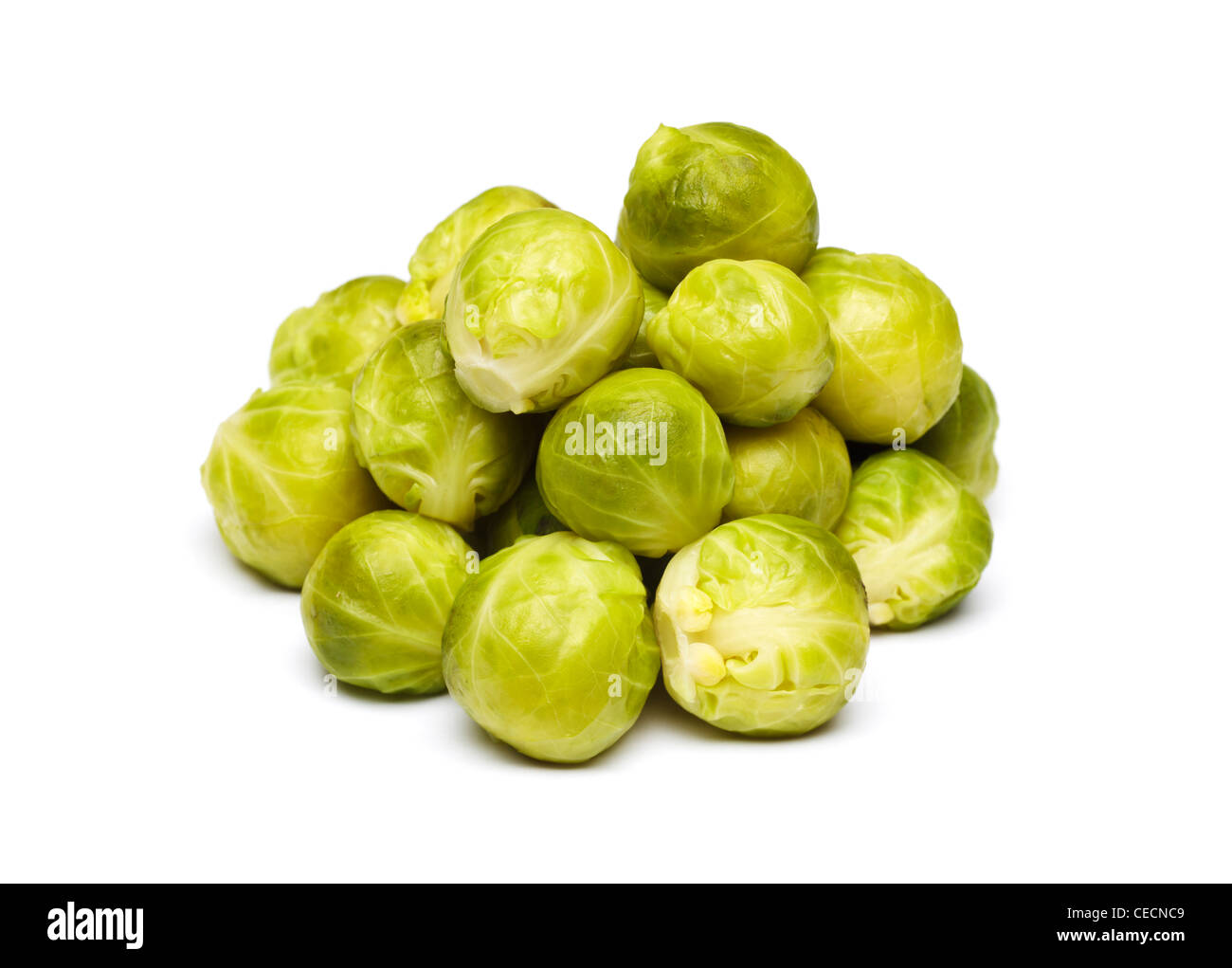 Brussel sprouts cooked on white background - Stock Image