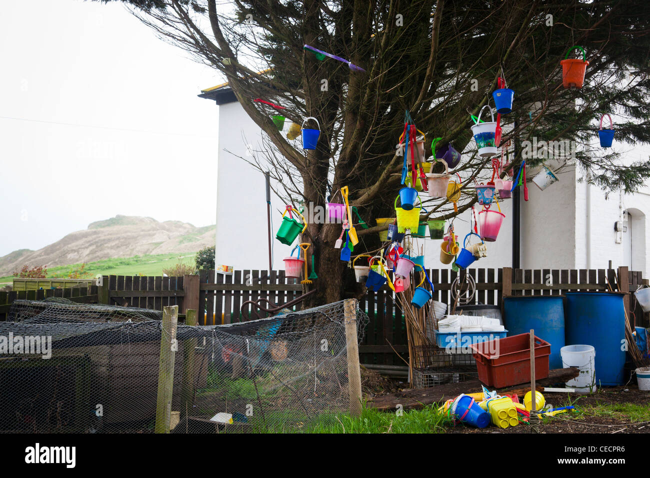Collection of sundry buckets and spades adorn a tree next to Lulworth Cove, Dorset, England. Stock Photo