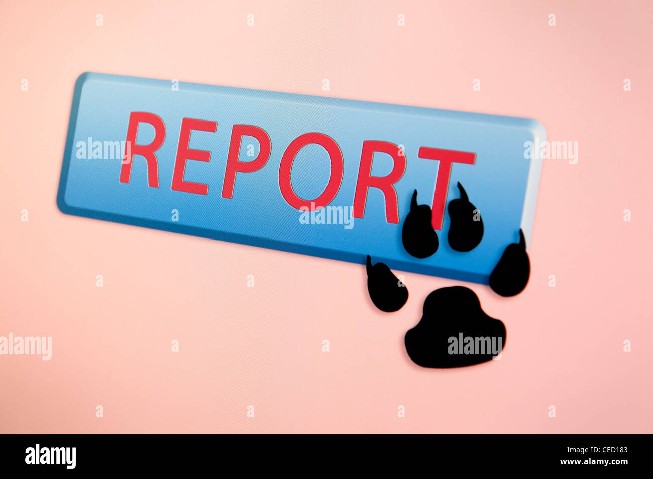 Paw print cursor hovers over a REPORT button Stock Photo