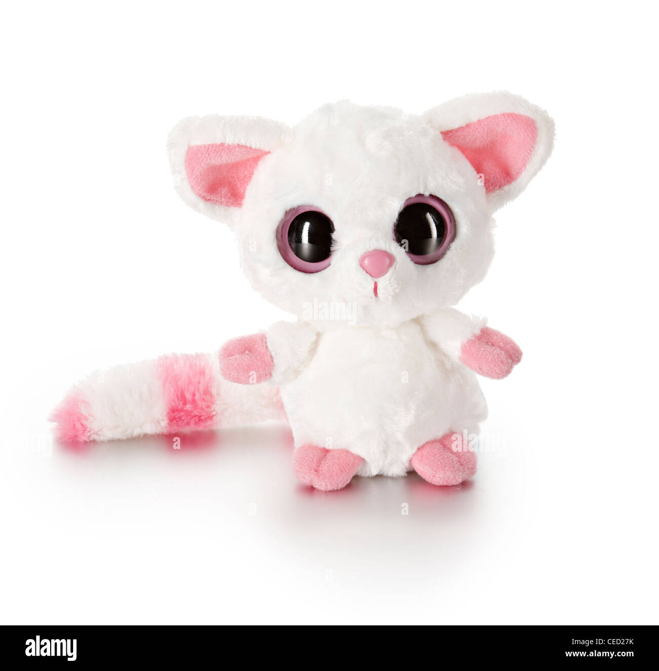 Fennec Aurora soft toy - Stock Image