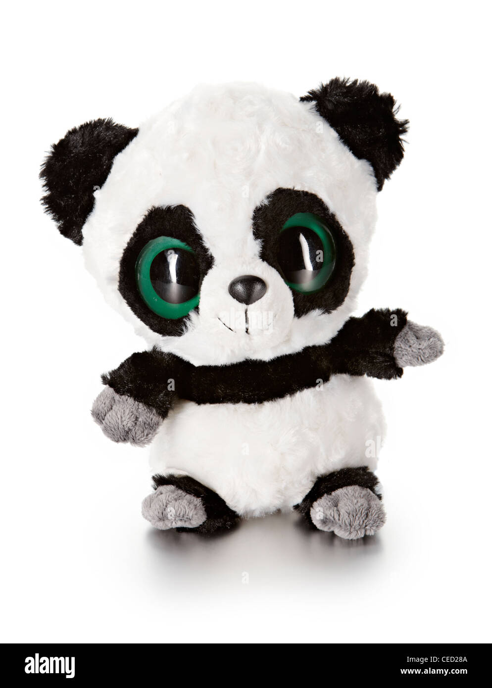 Panda Aurora soft toy - Stock Image