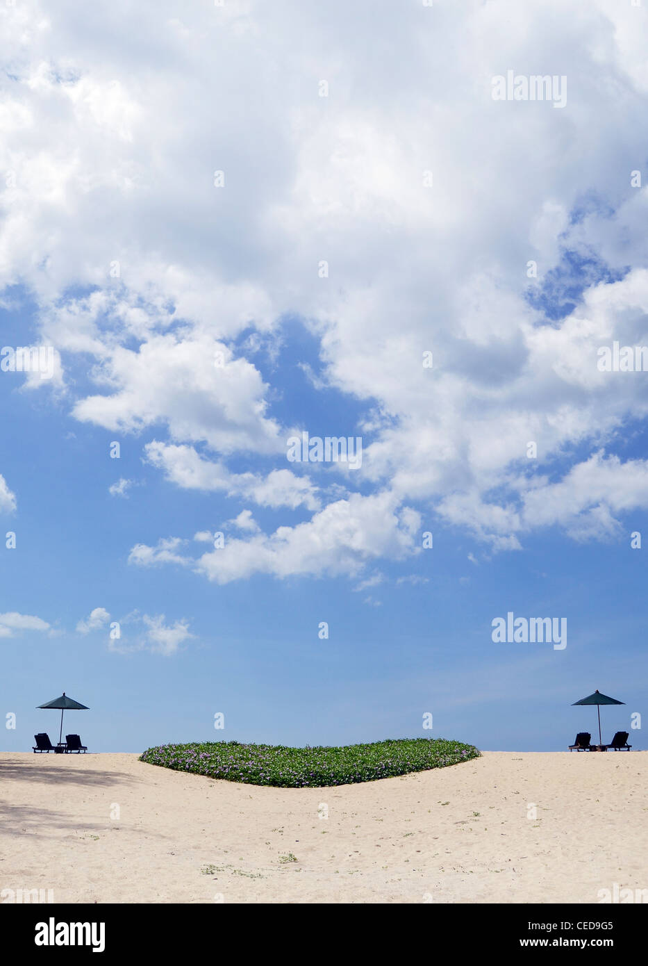 Dream beach with sun loungers and a green heart from plants, Phuket, Southern Thailand, Thailand, Southeast Asia - Stock Image