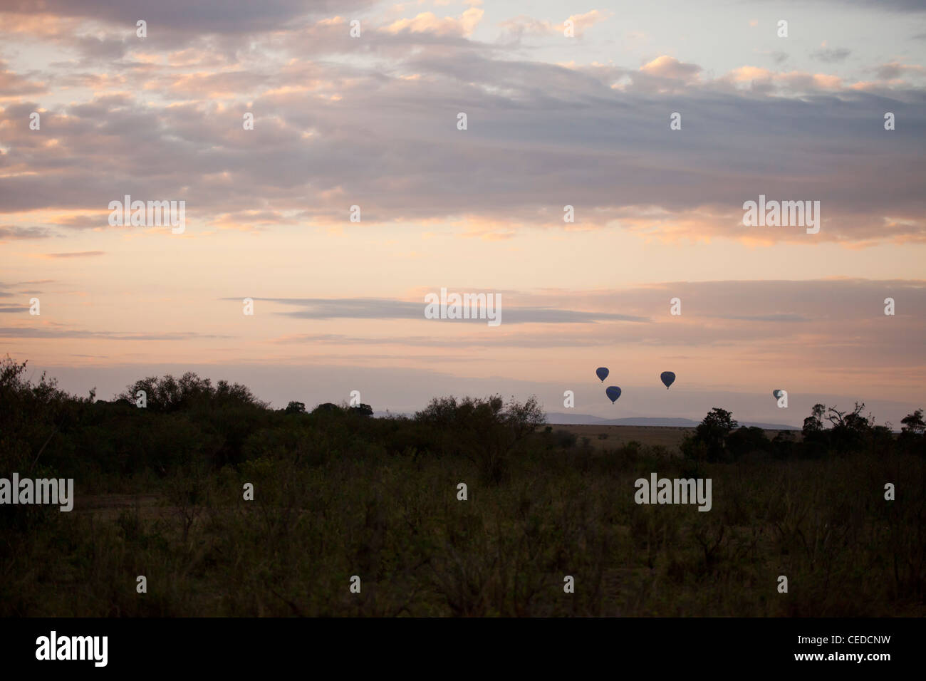 Kenya - Masai Mara game reserve -  Early Morning Landscape - Stock Image