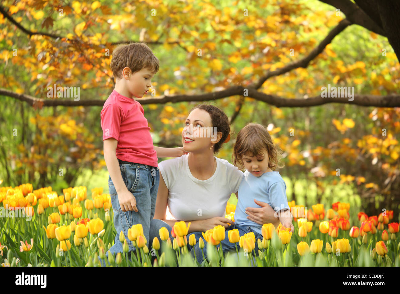 Mother with children in garden in spring among blossoming tulips - Stock Image