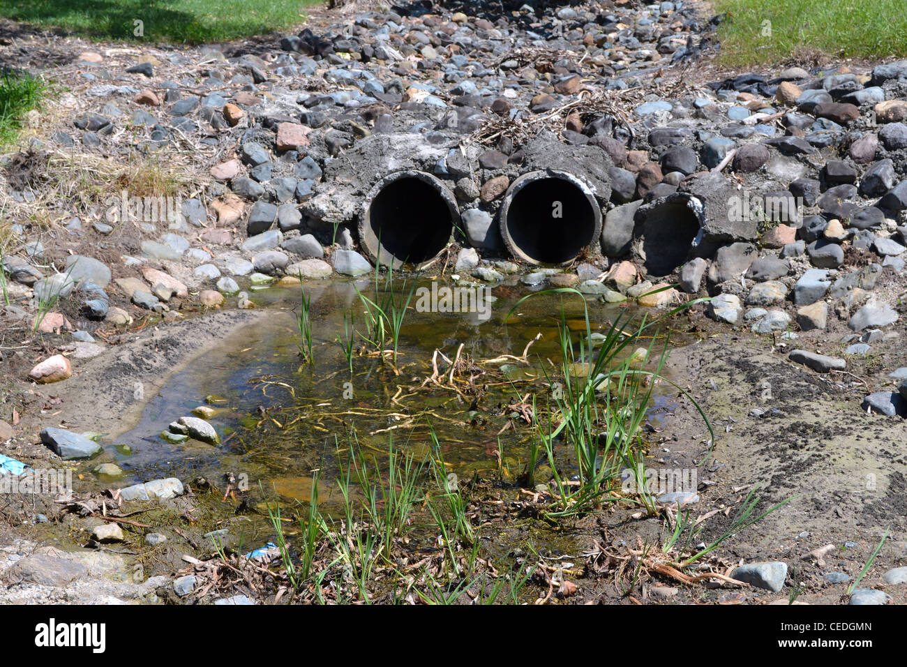 stagnant rain water Stock Photo